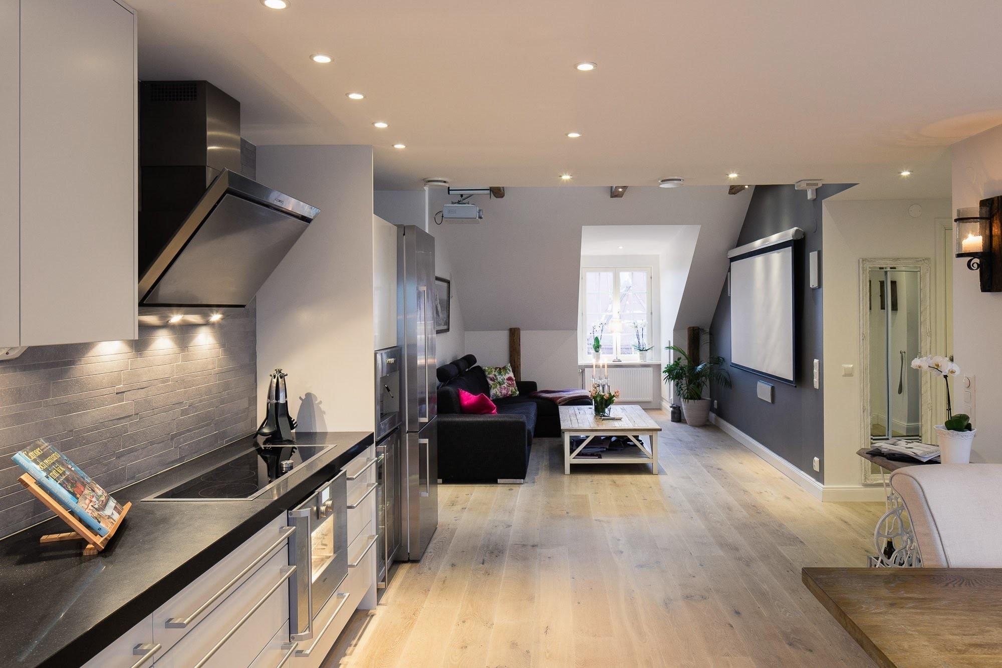 Elegant Small One Bedroom Modern Attic Apartment