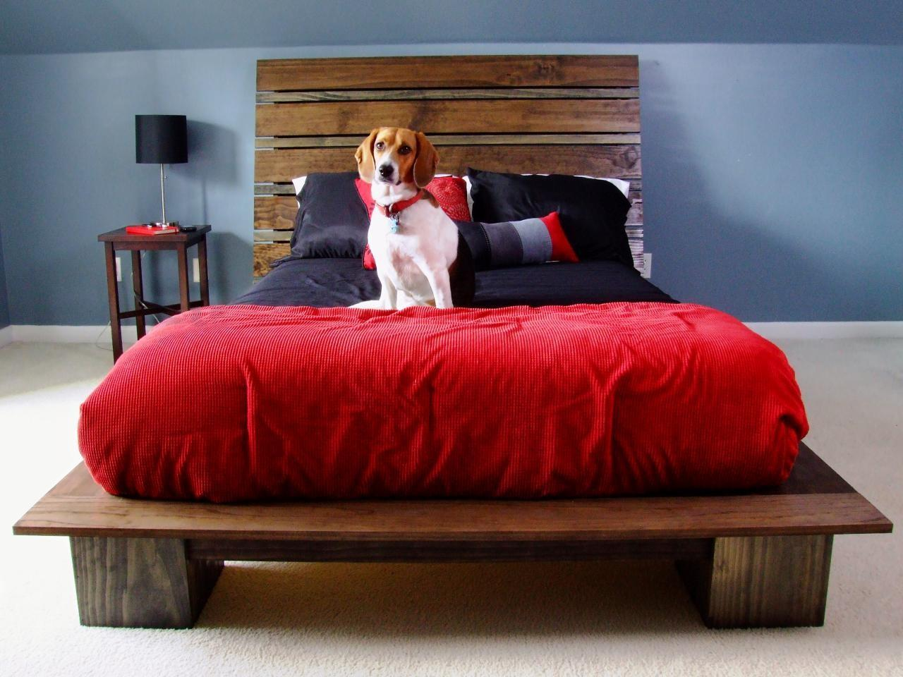 Elevated Dog Bed Diy Materials