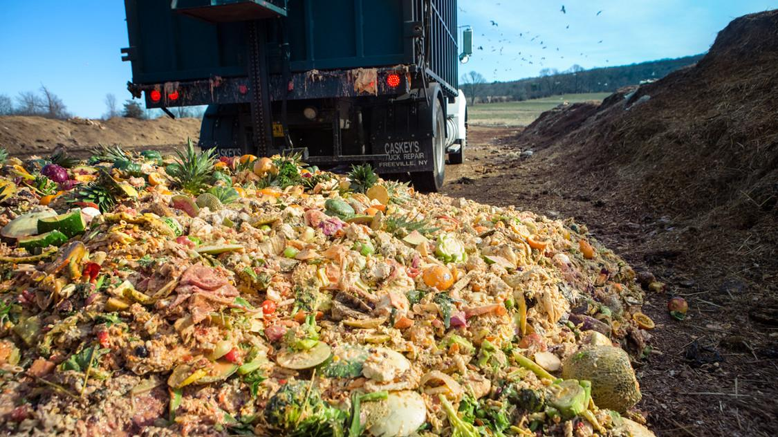 Engineers Transform Food Waste Into Green Energy