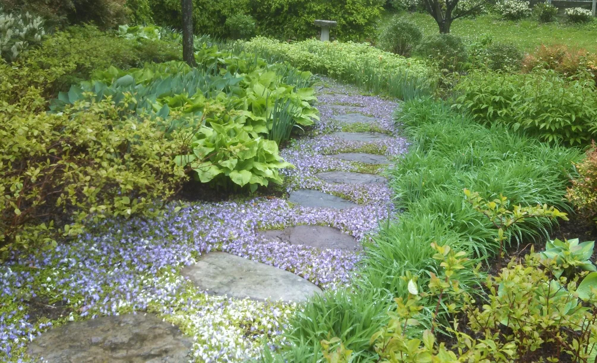 Enhance Your Yard Through Stone Steps Pathways