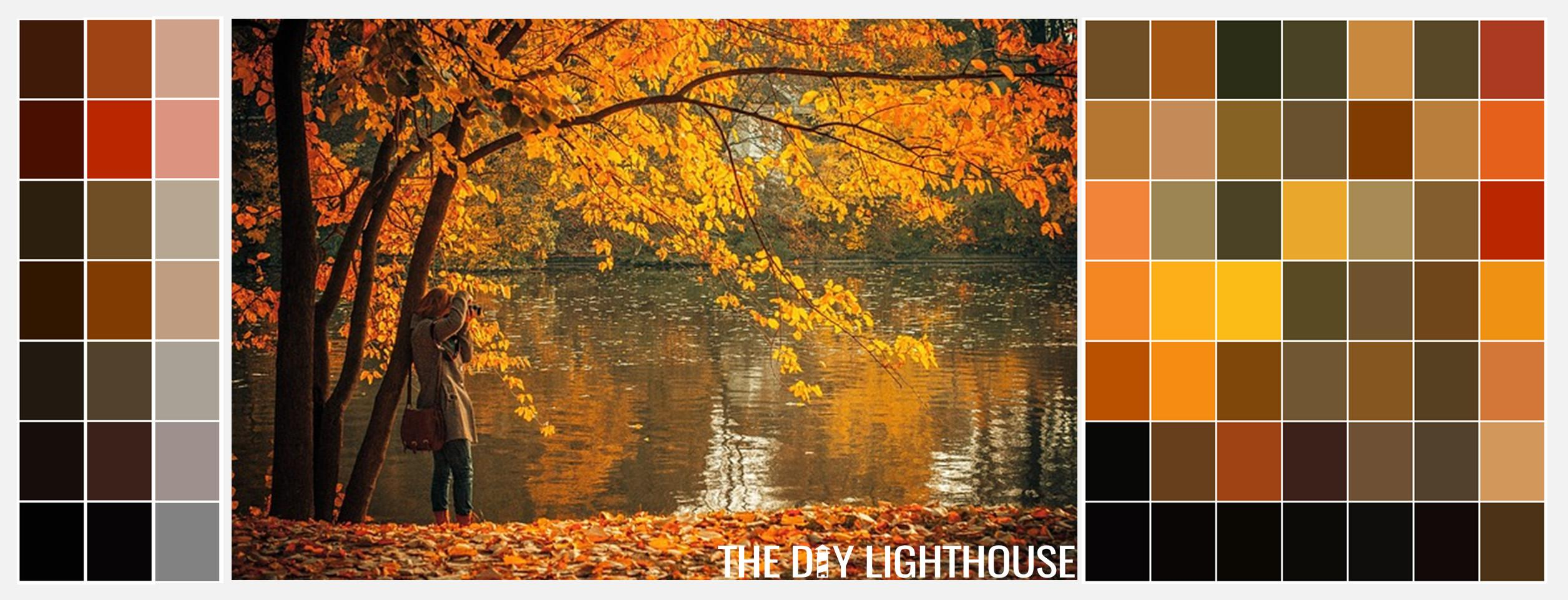 Essential Fall Color Palettes Diy Lighthouse