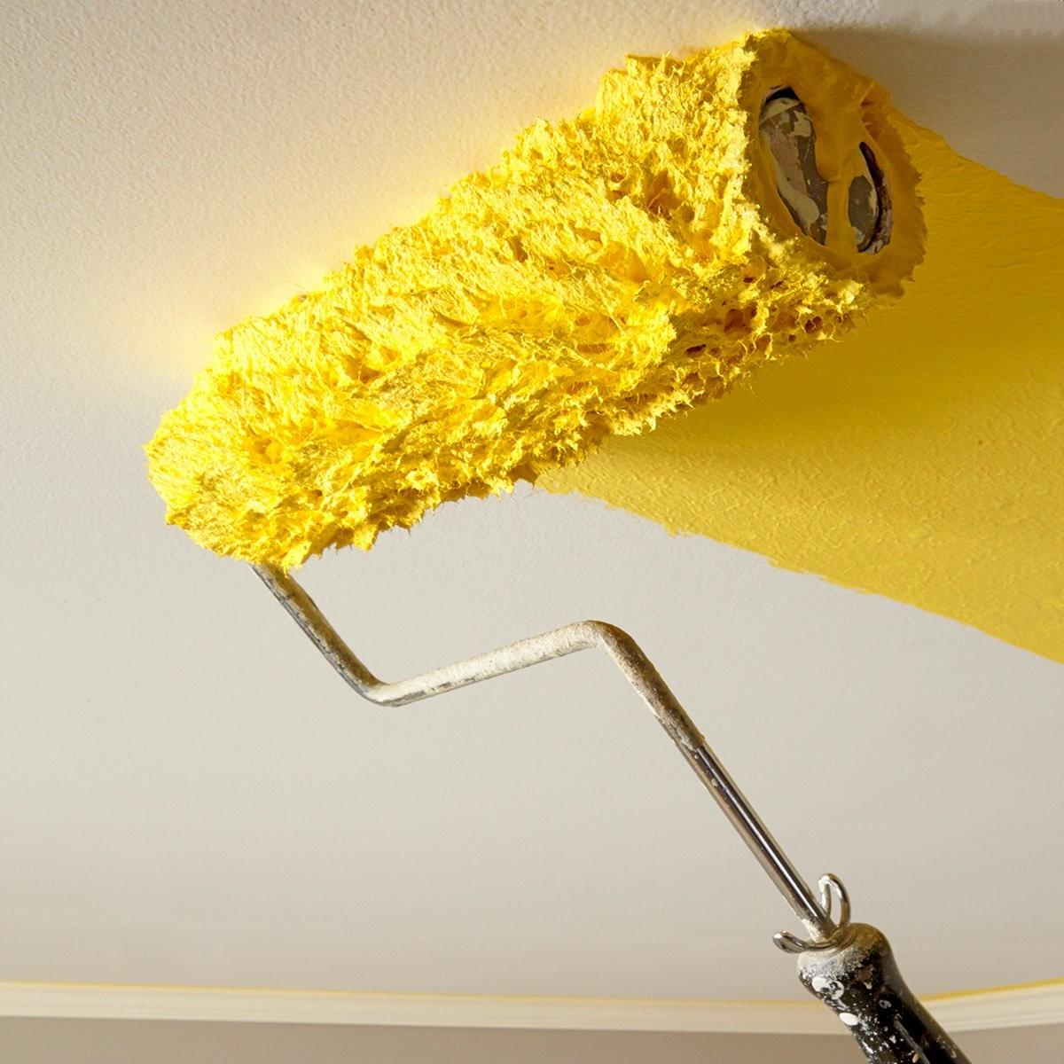 Expert Guide Ceiling Painting Construction Pro Tips