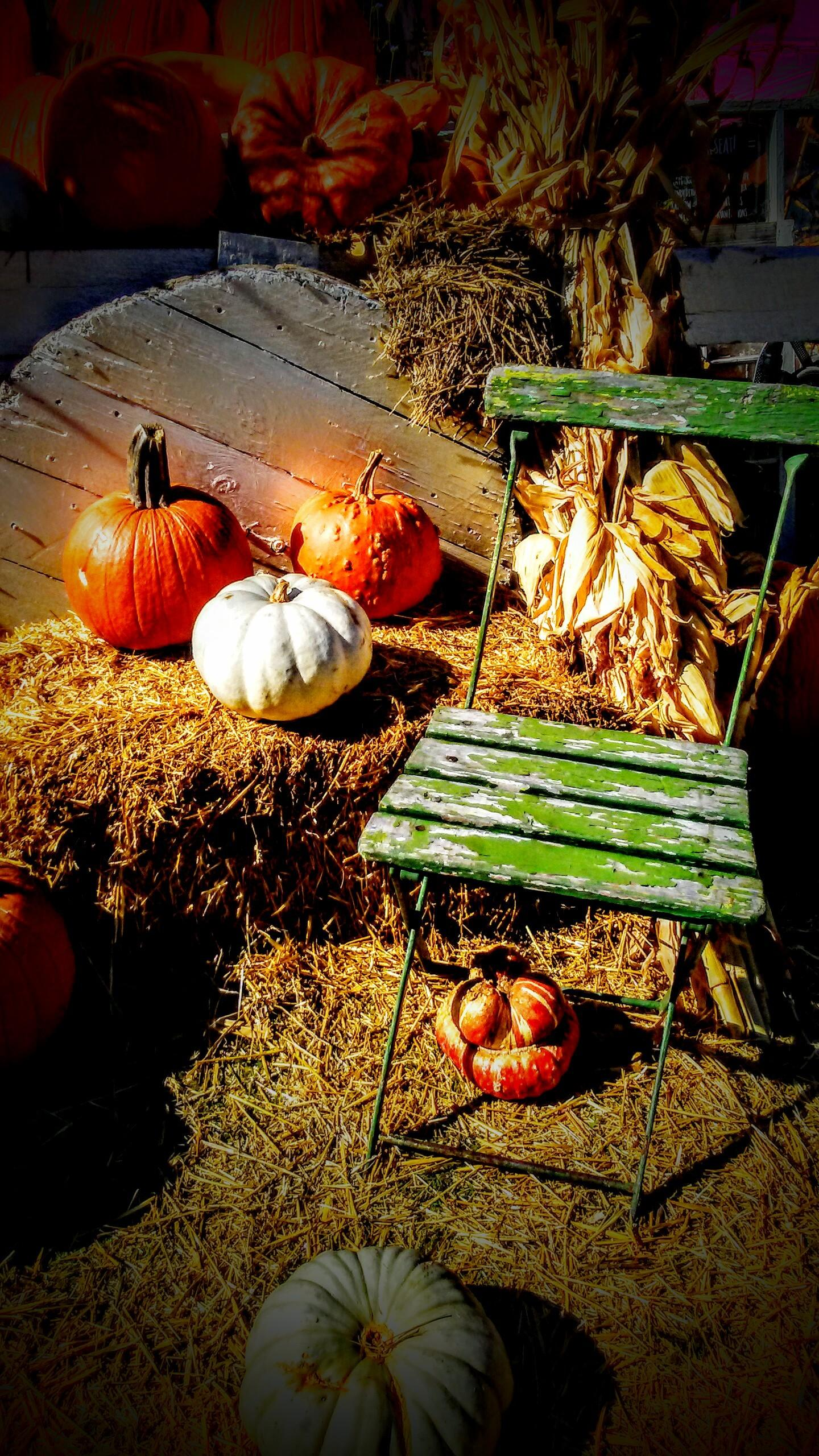 Fall Rustic Decorating Ideas Noelia Unik Designs
