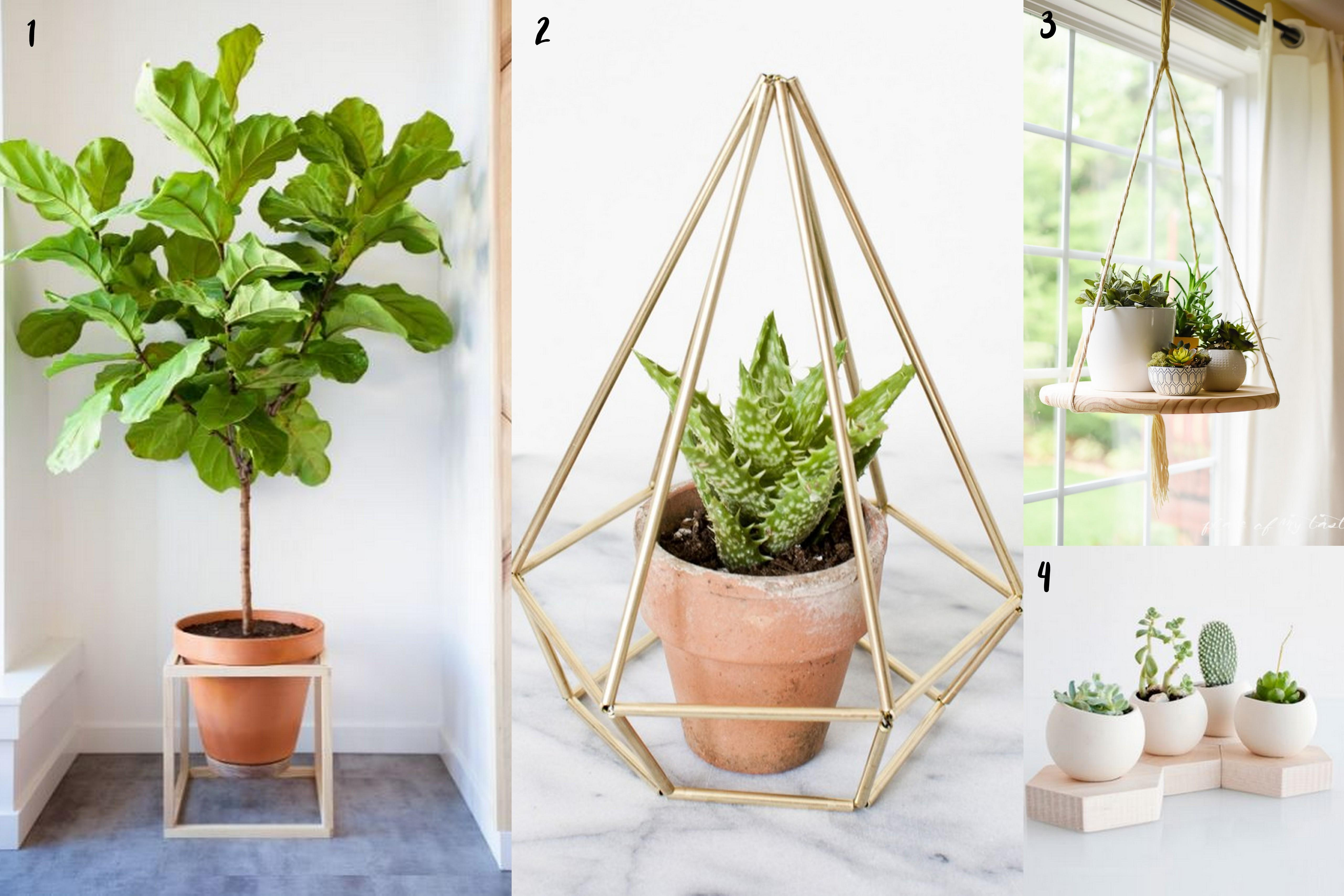 Fancy Finds Indoor Plant Stands Within Grove