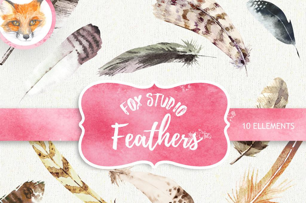 Feathers Watercolor Clipart Hand Painted Diy Elements