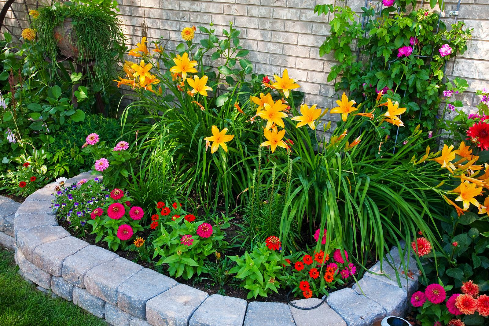 Finding Best Flower Beds Against House Design