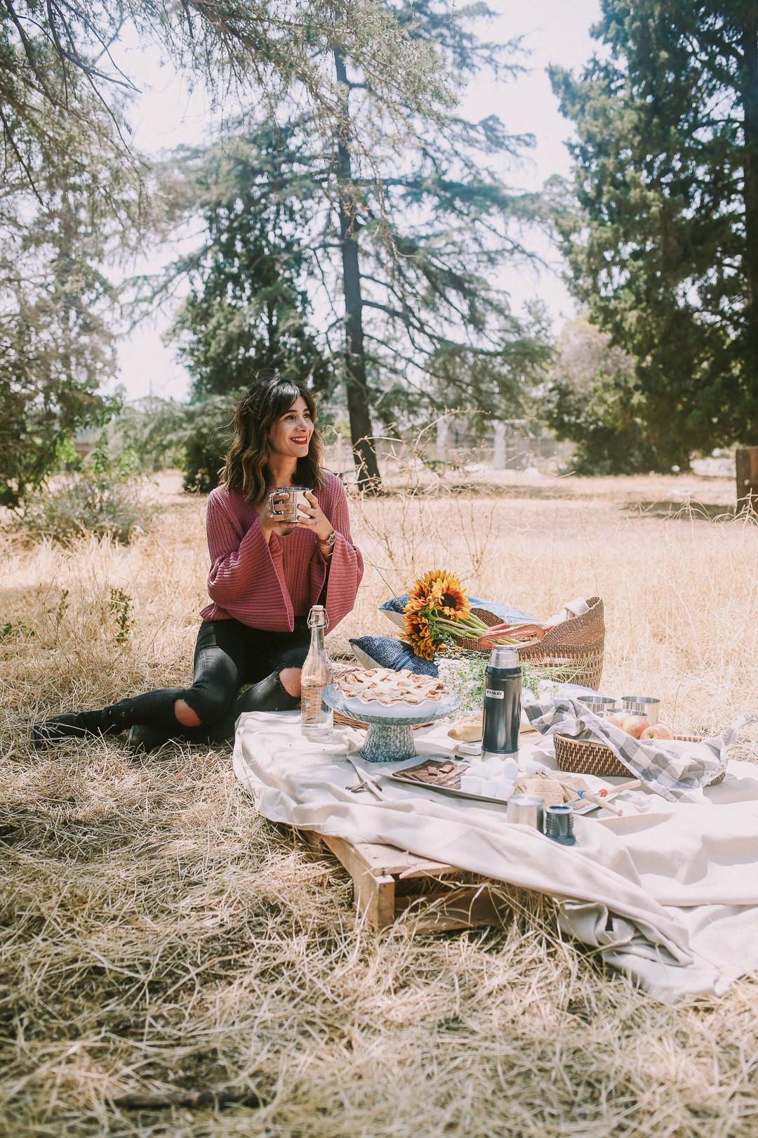 First Fall Fossil Simple Picnic Ideas