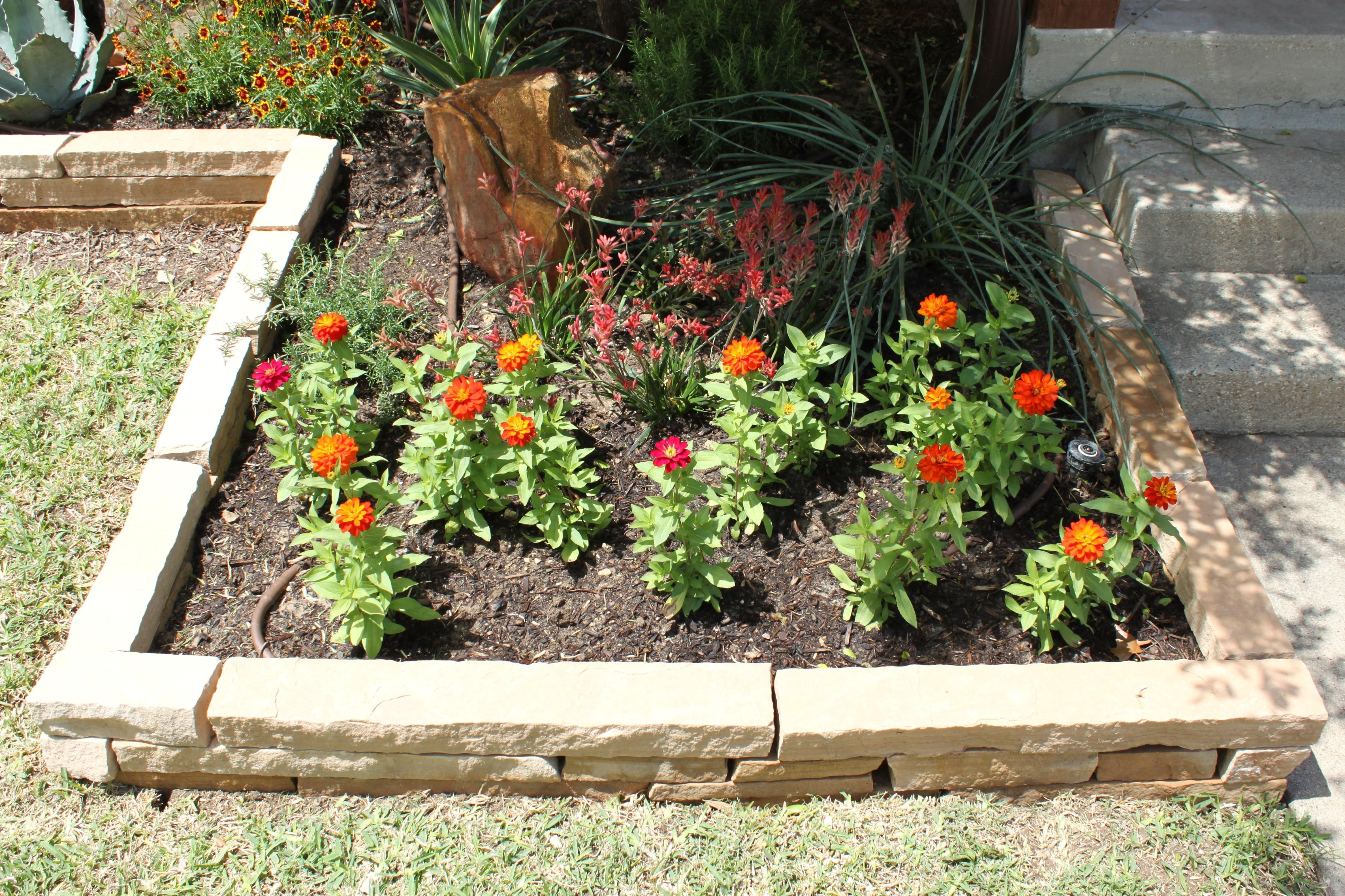 Flower Beds Cavender Diary