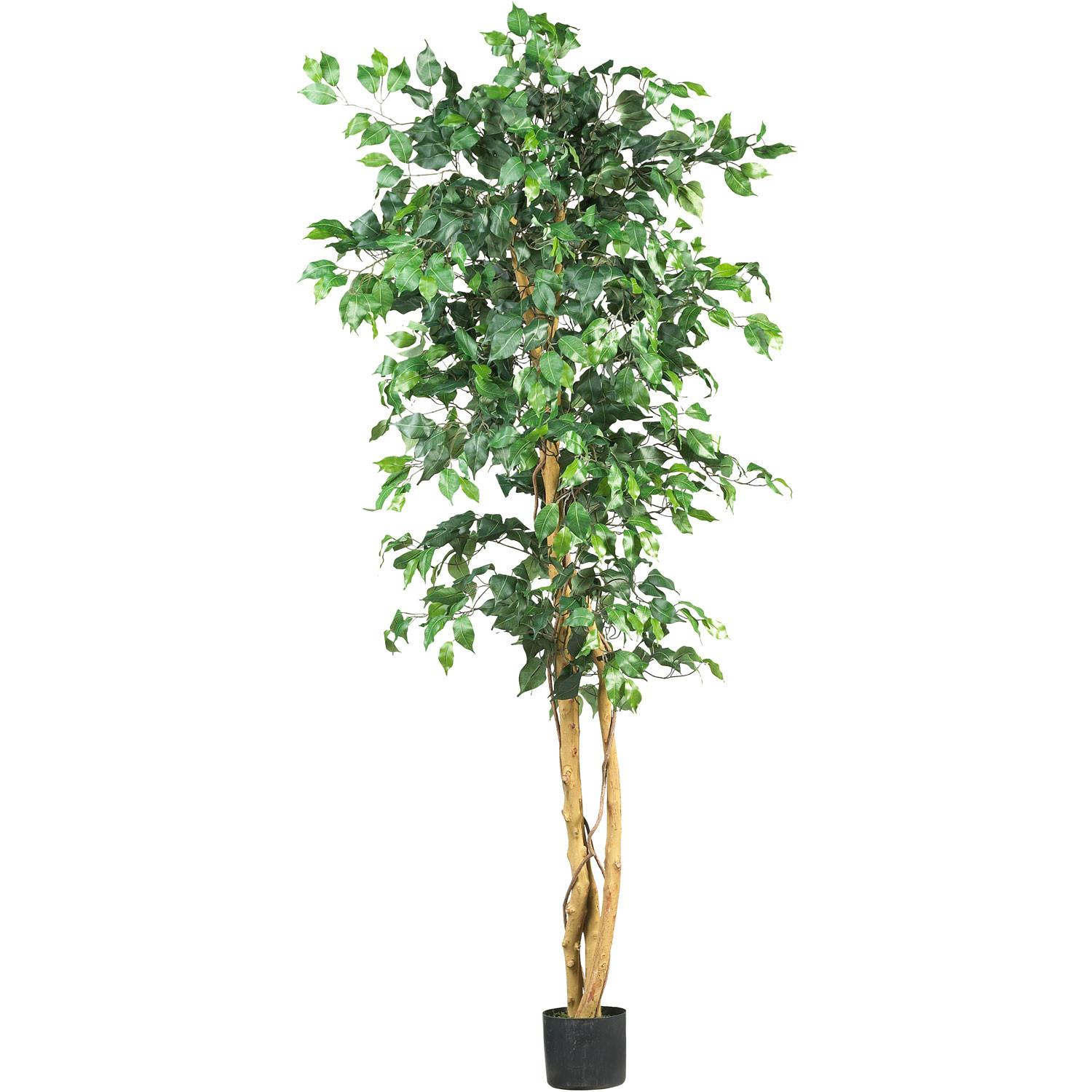 Foot Artificial Ficus Tree Potted 5209 Nearly Natural