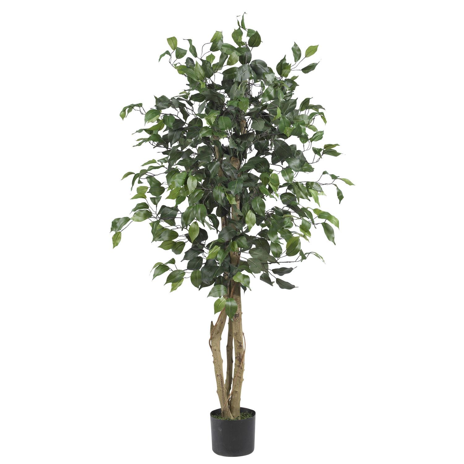 Foot Silk Ficus Tree Potted 5299 Nearly Natural