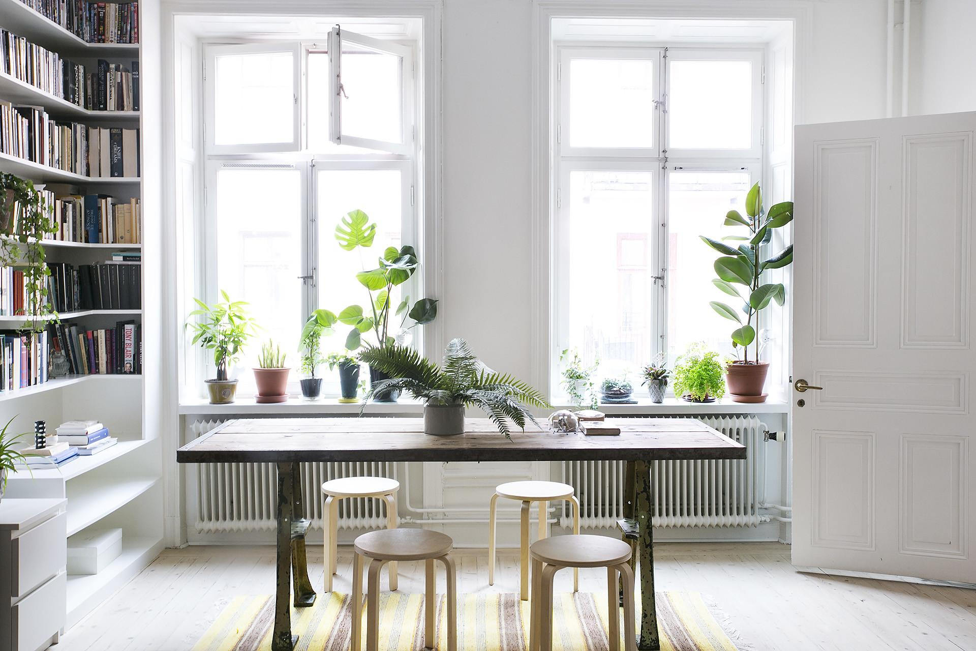 Fredagsmys Swedish Apartment Filled Green Plants