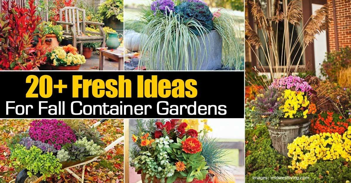 Fresh Ideas Fall Container Gardens