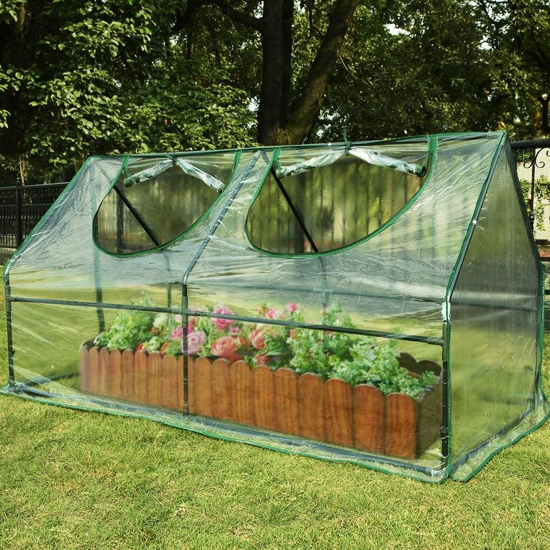 Frost Protection Plants