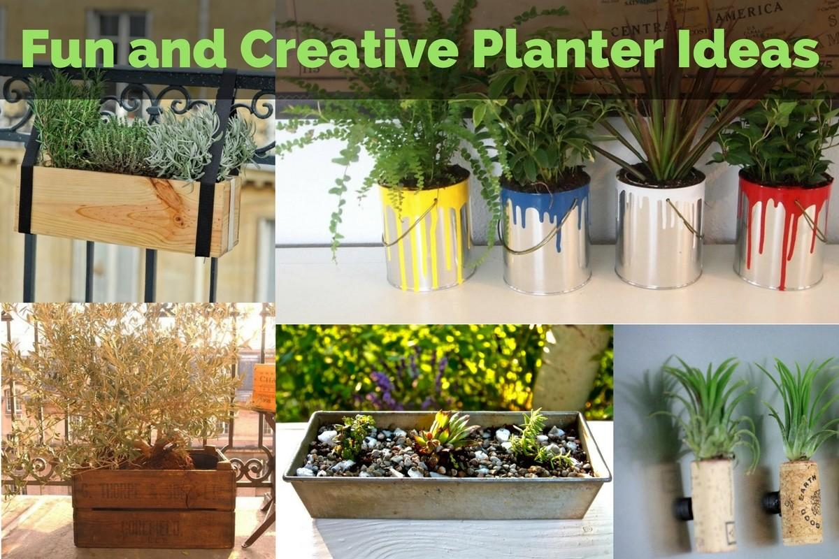 Fun Creative Planter Ideas Yardyum Garden Plot