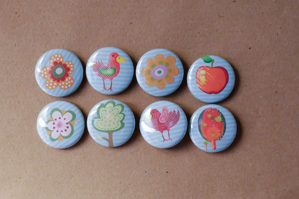 Funky Birds Buttons Magnets Set Eight Pinback