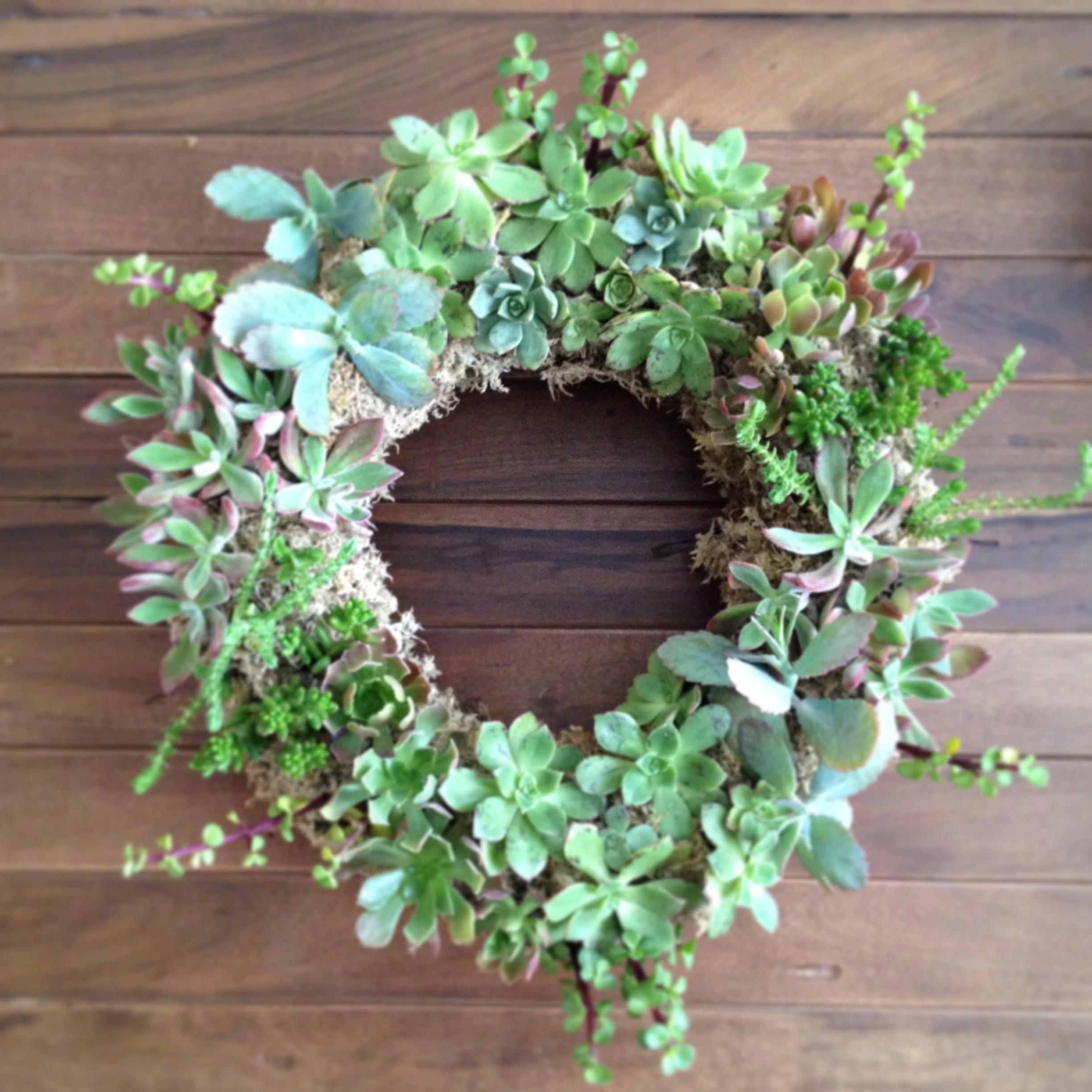 Garden Inspired Spring Succulent Wreaths Arrow Sage