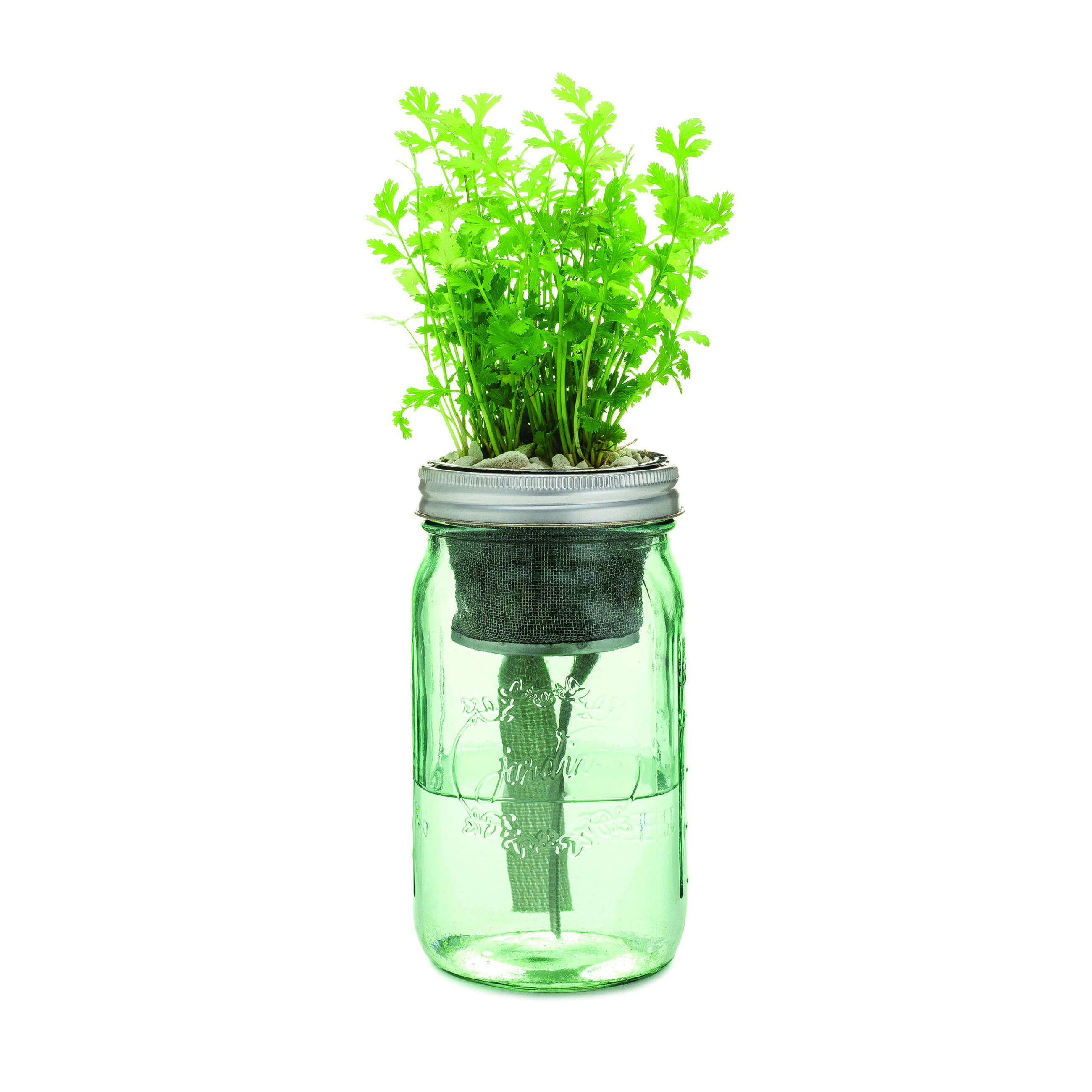 Garden Jars Self Watering Herb Kits Brit Shop
