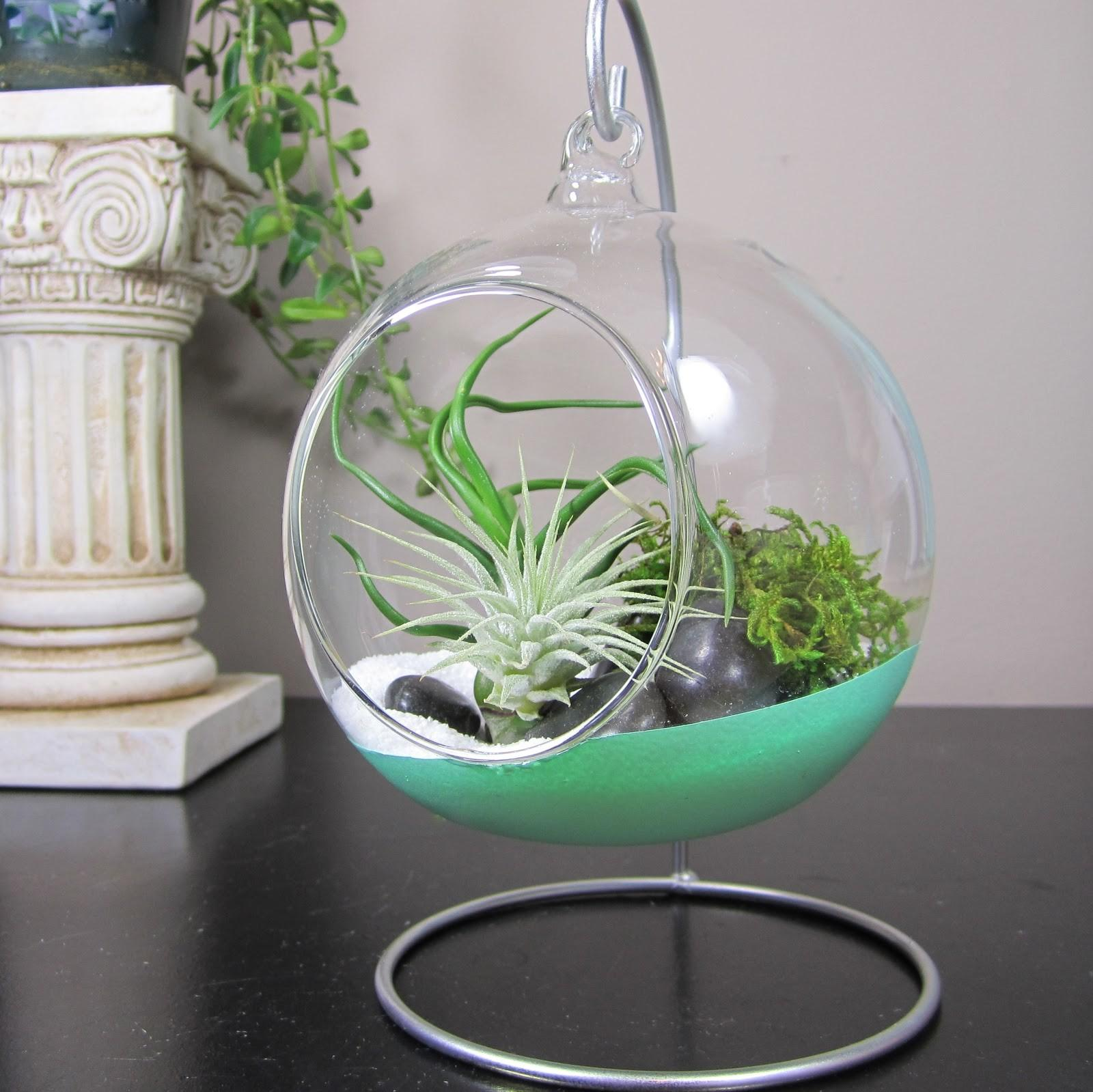 Glass Terrarium Bubble Air Plant Containers Stand