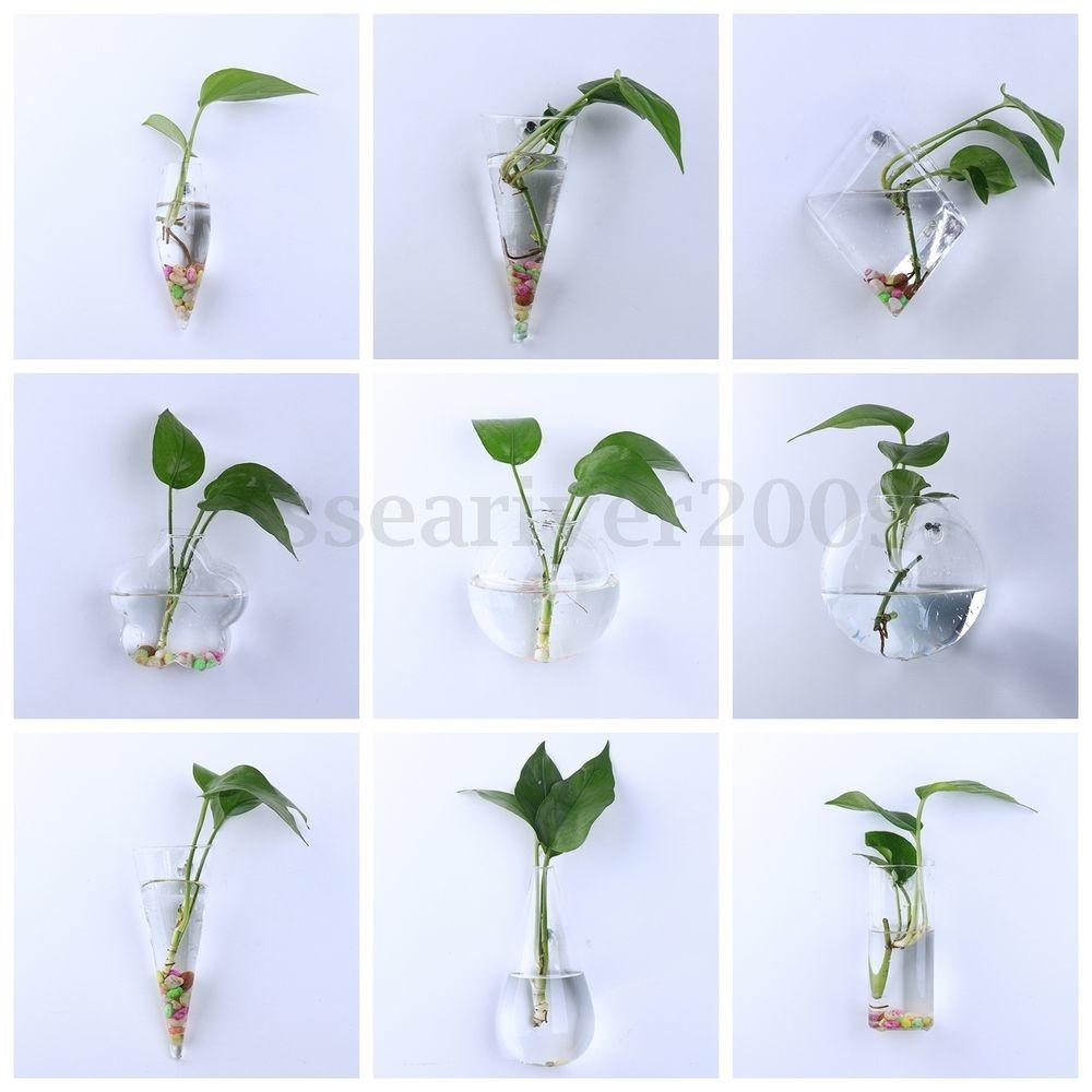 Good Packaging Wall Hanging Plant Flower Vase Terrarium