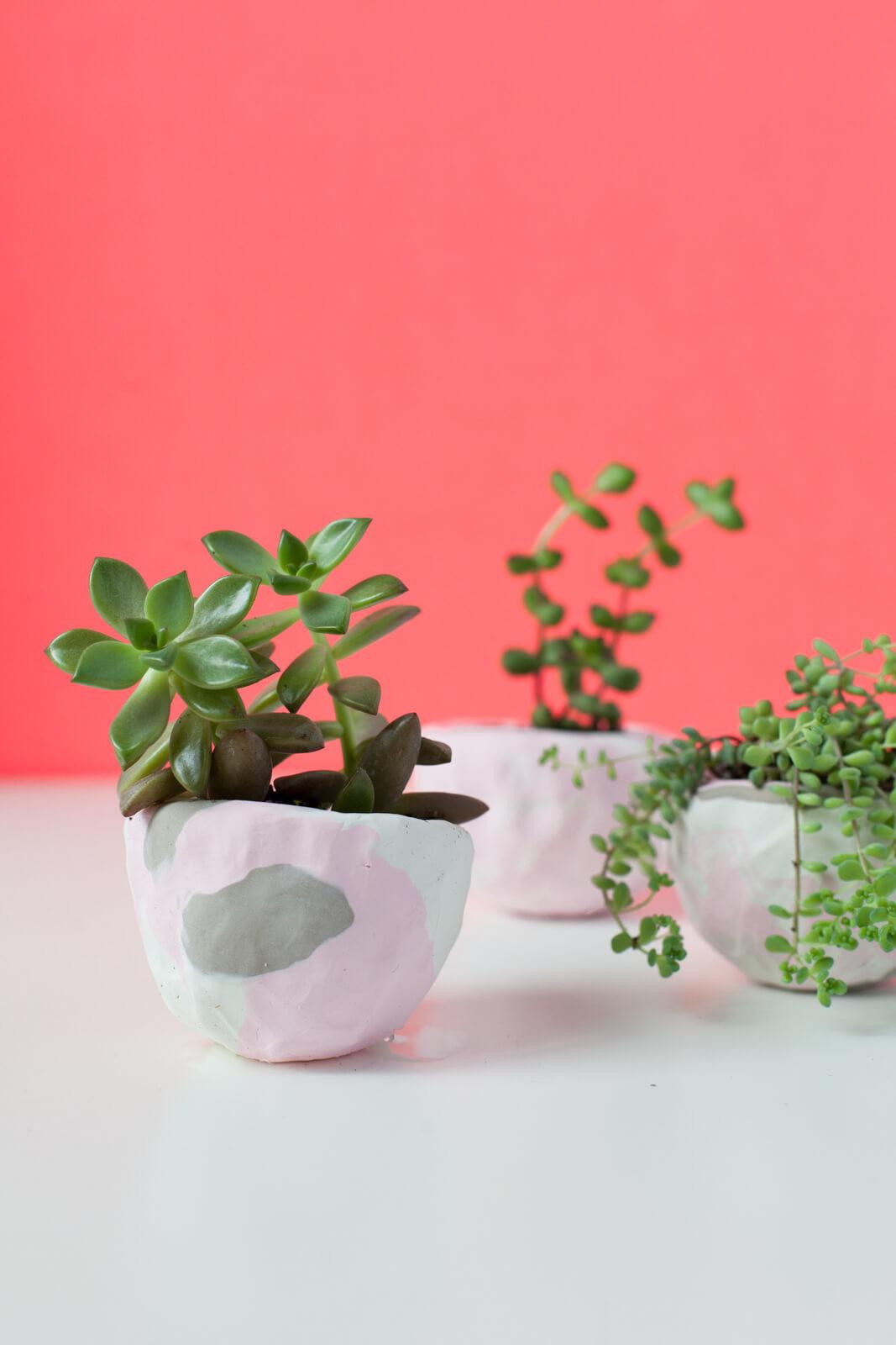 Gorgeous Diy Succulent Planters Need Make