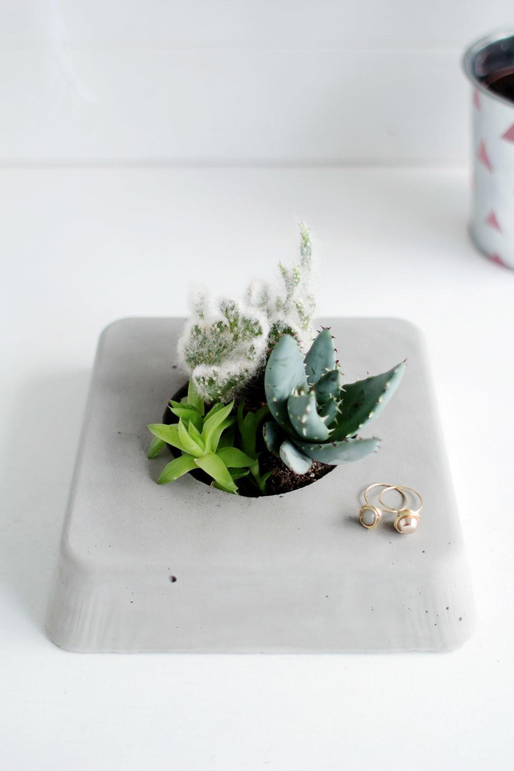 Gorgeous Diy Succulent Planters Need Make Just