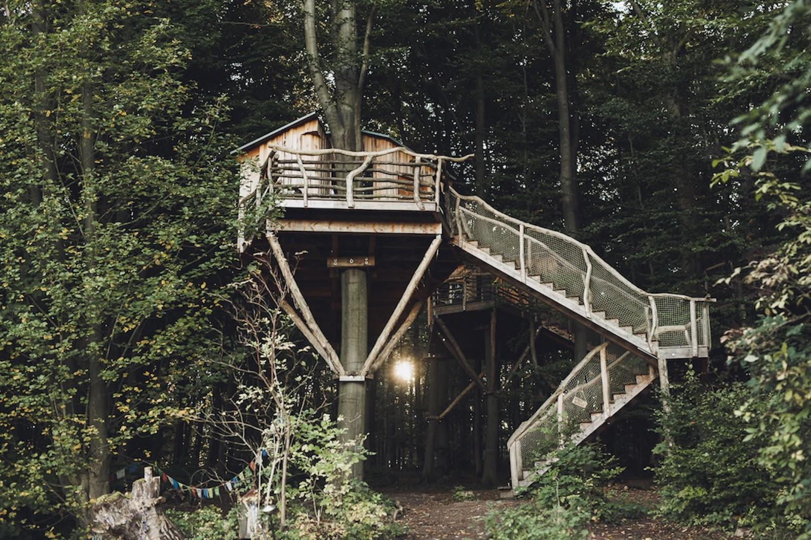 Gorgeous Robin Nest Treehouse Hotel Immerses