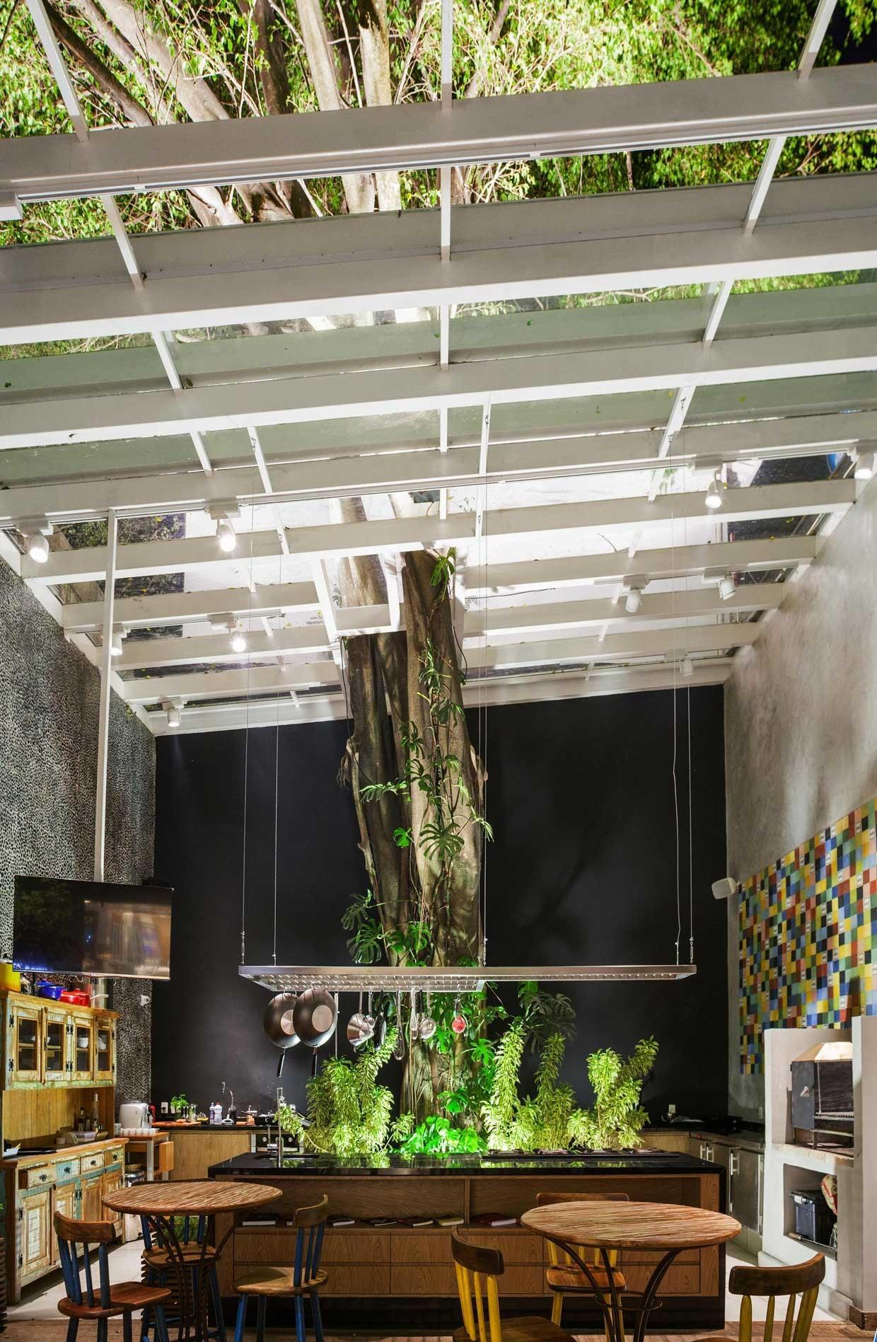 Great Ideas Trees Interior Your Home