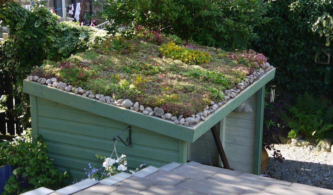 Green Roof Installers Suppliers Roofs Naturally