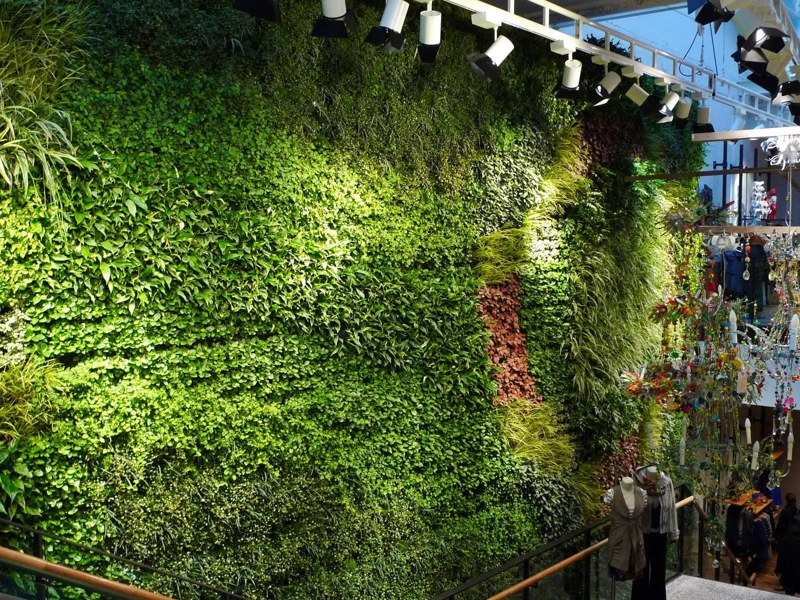 Green Wall Sustainability Usability Home Landscape