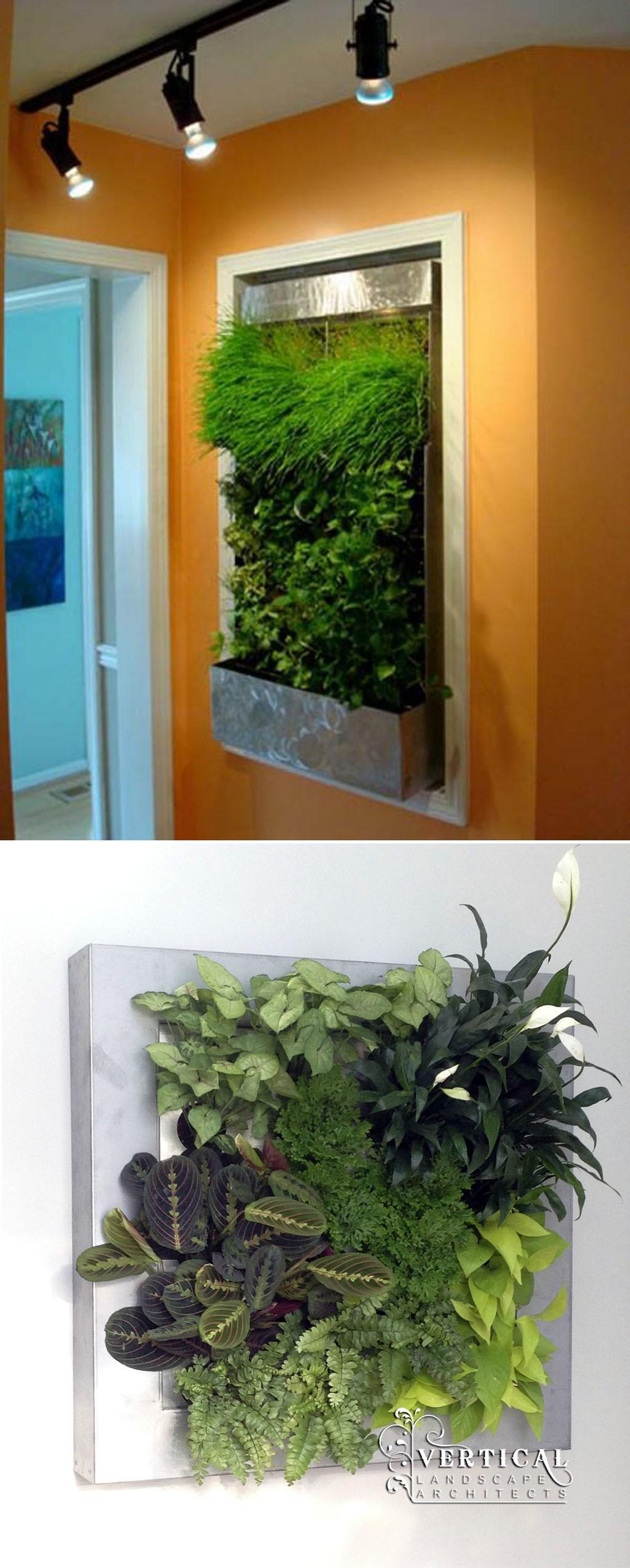 Green Walls Vertical Landscape Architects Small Indoor