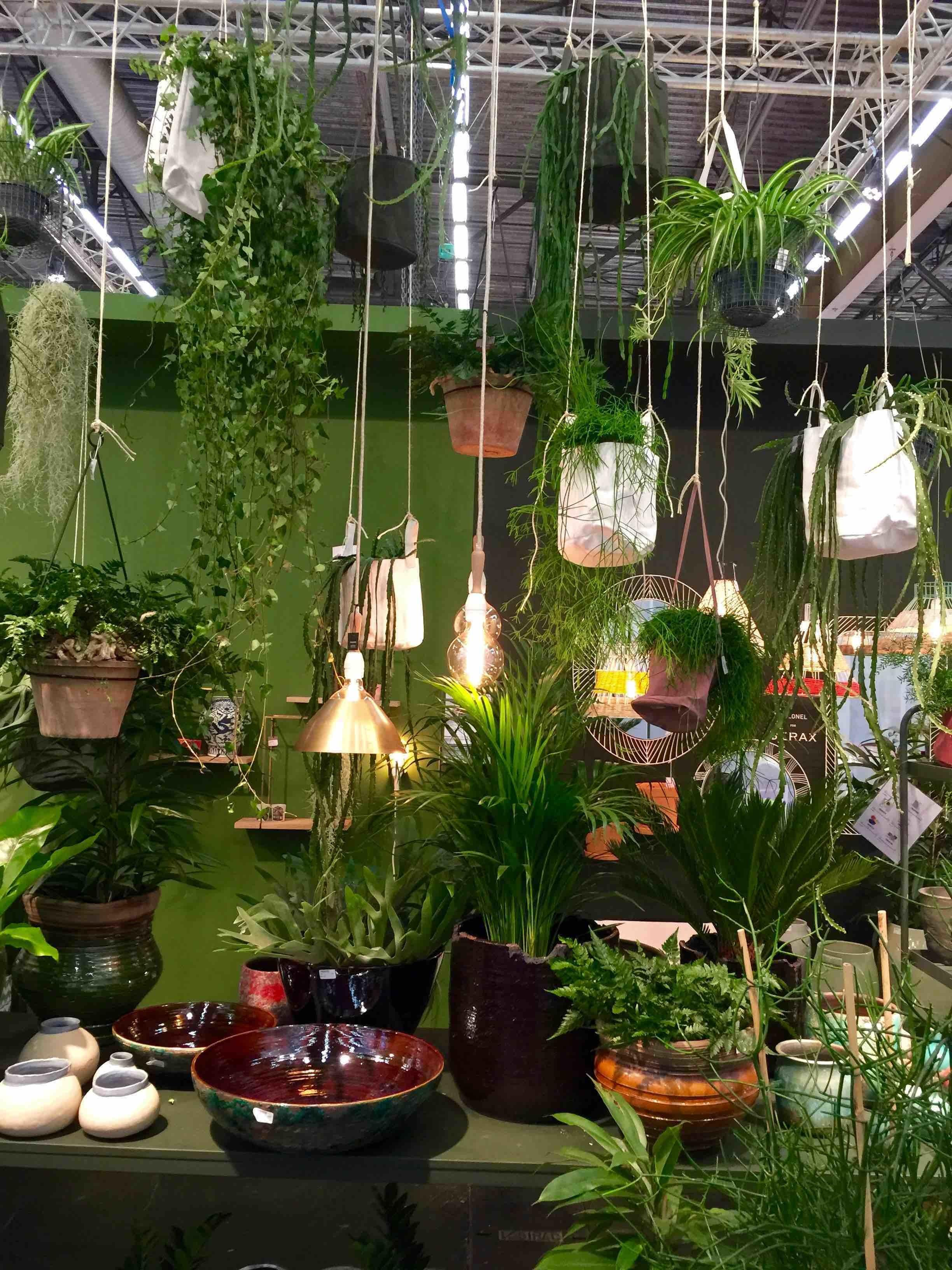 Greenery More Than Just Colour Interior Design Ideas