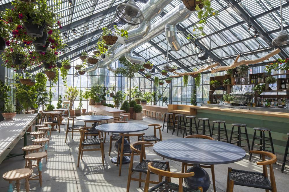 Greenhouse Eating Ace Hotel
