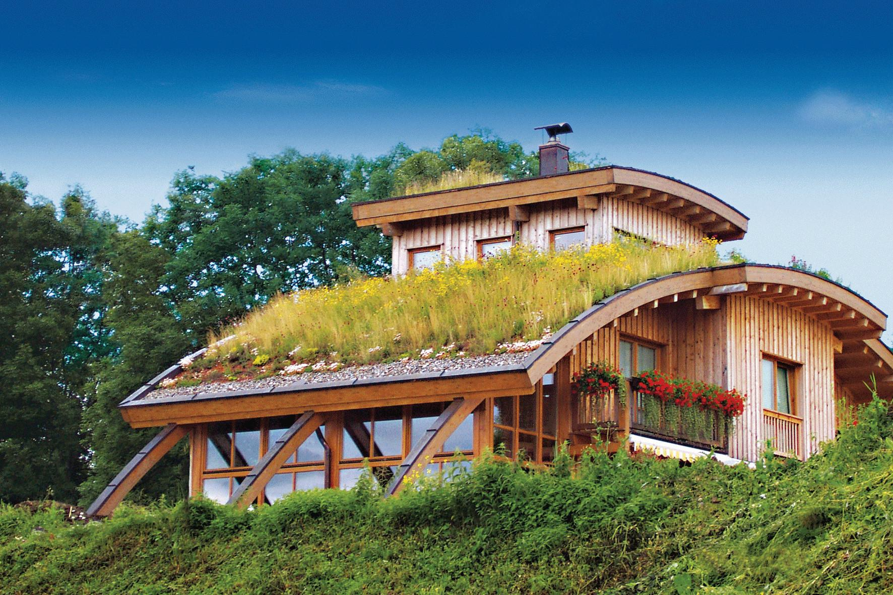 Greenroofs Earth Day Contest