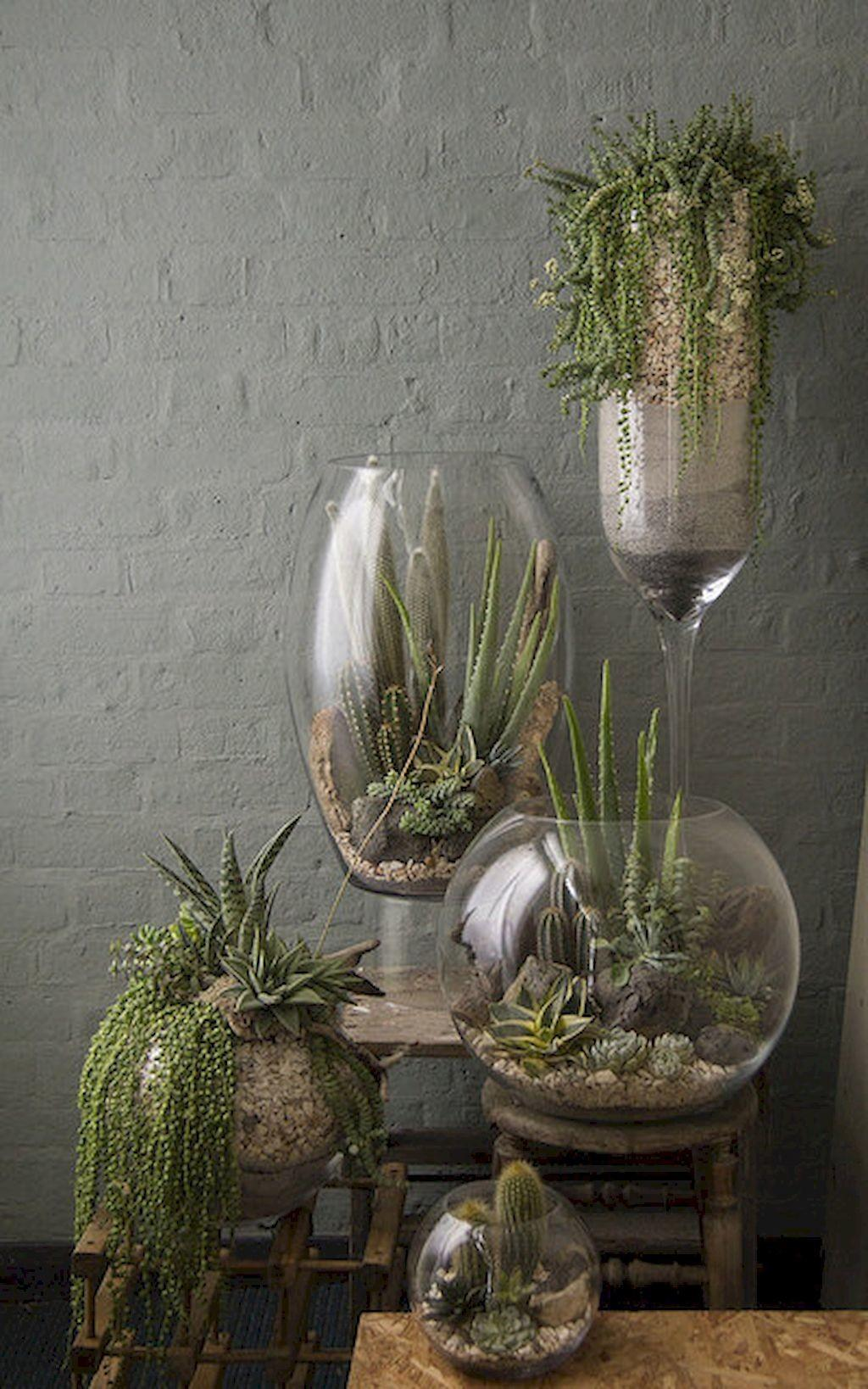 Greeny Indoor Plants Ideas Purify Your Room