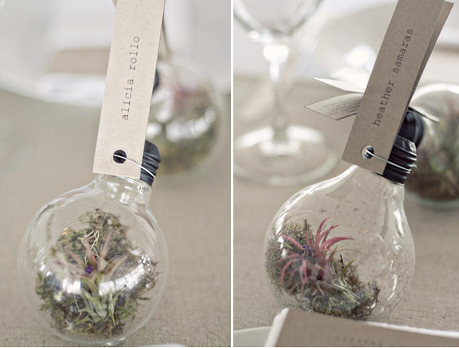 Grow Your Own Favors Decor