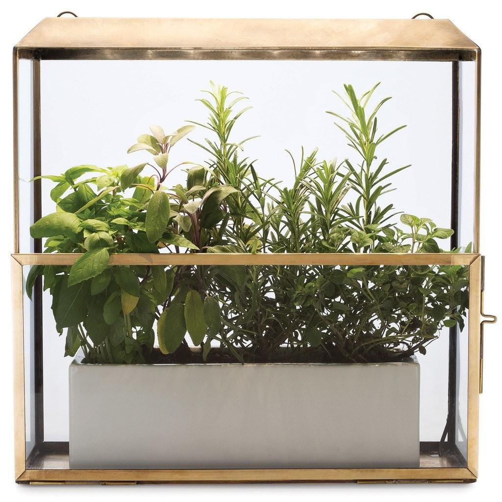 Growhouse Modernsprout