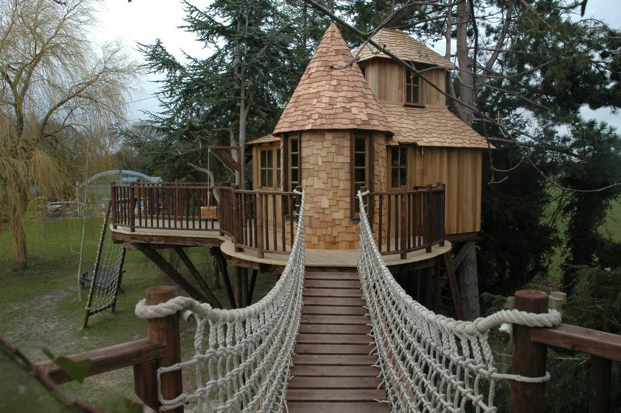 Growing Without Getting Old Childhood Tree House