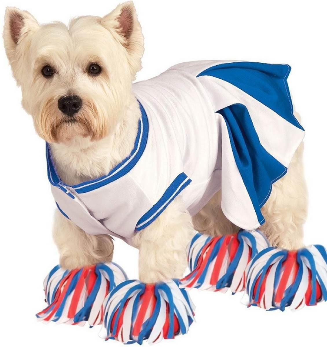 Halloween Dog Costume Ideas Easy Cute Costumes Your