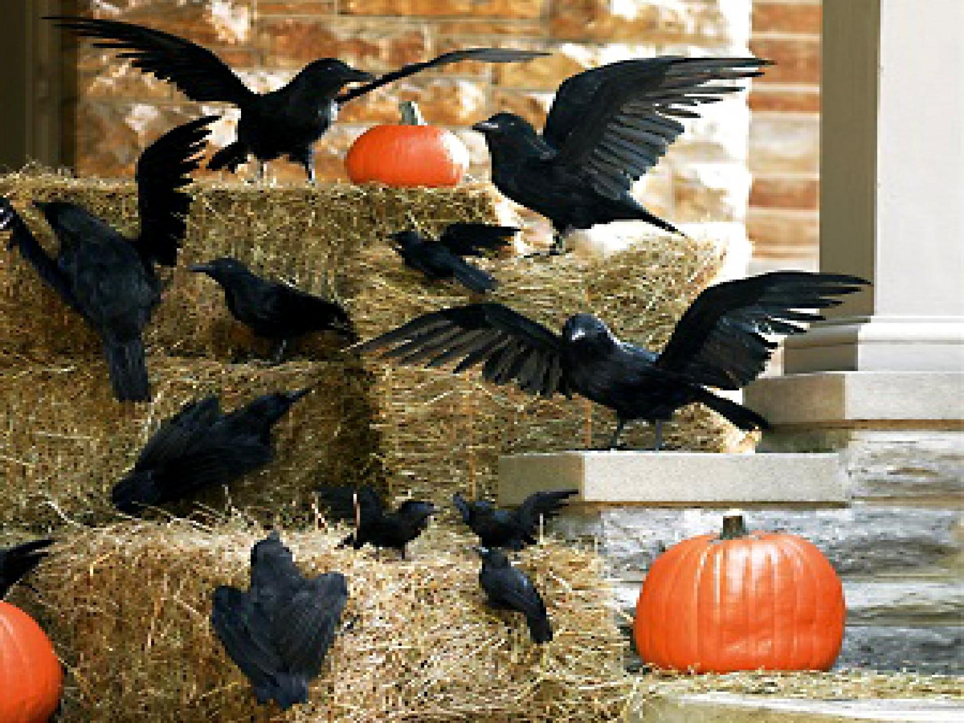 Halloween House Outdoor Decorating Ideas