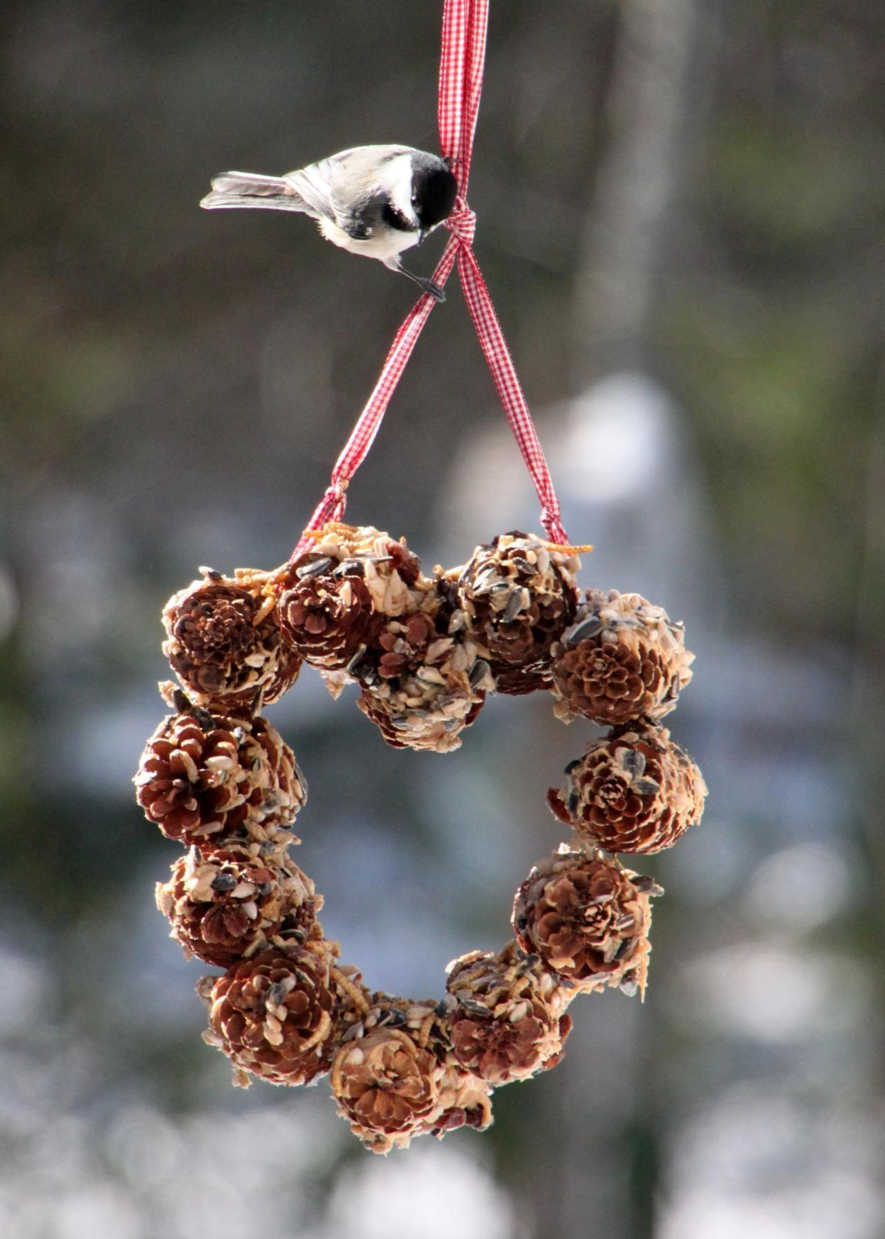 Handmade Pinecone Bird Feeder