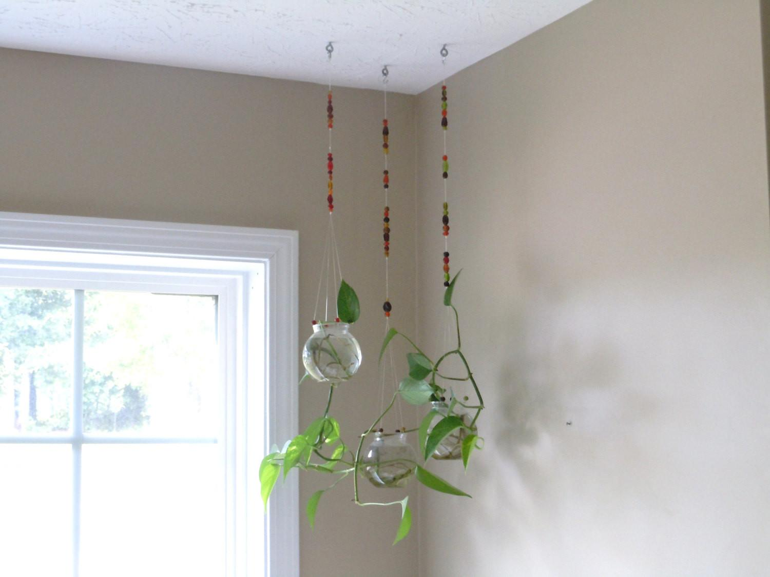 Hanging Ceiling Indoor Herb Garden Planter Jar Ideas