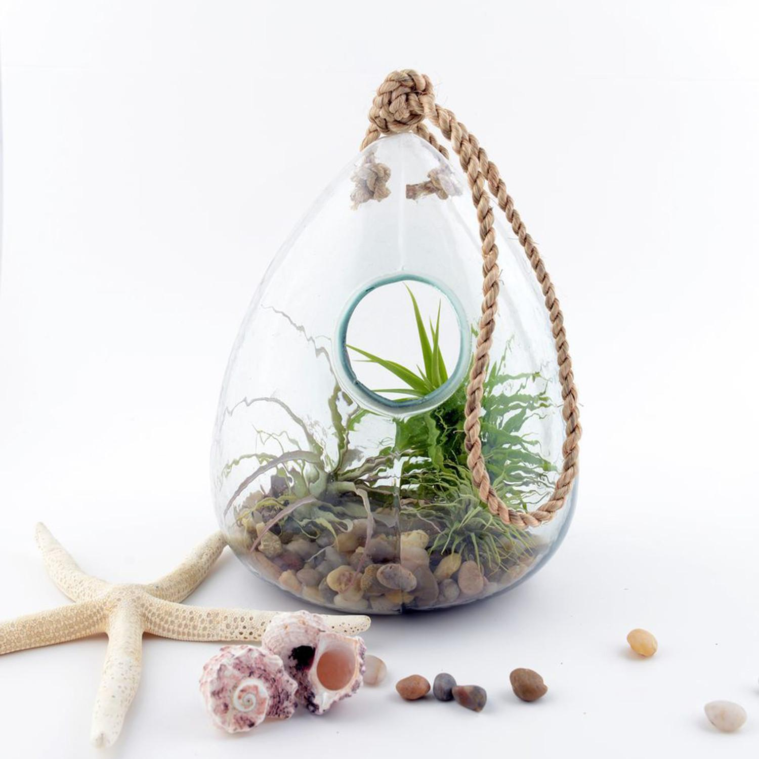 Hanging Glass Terrarium Globe