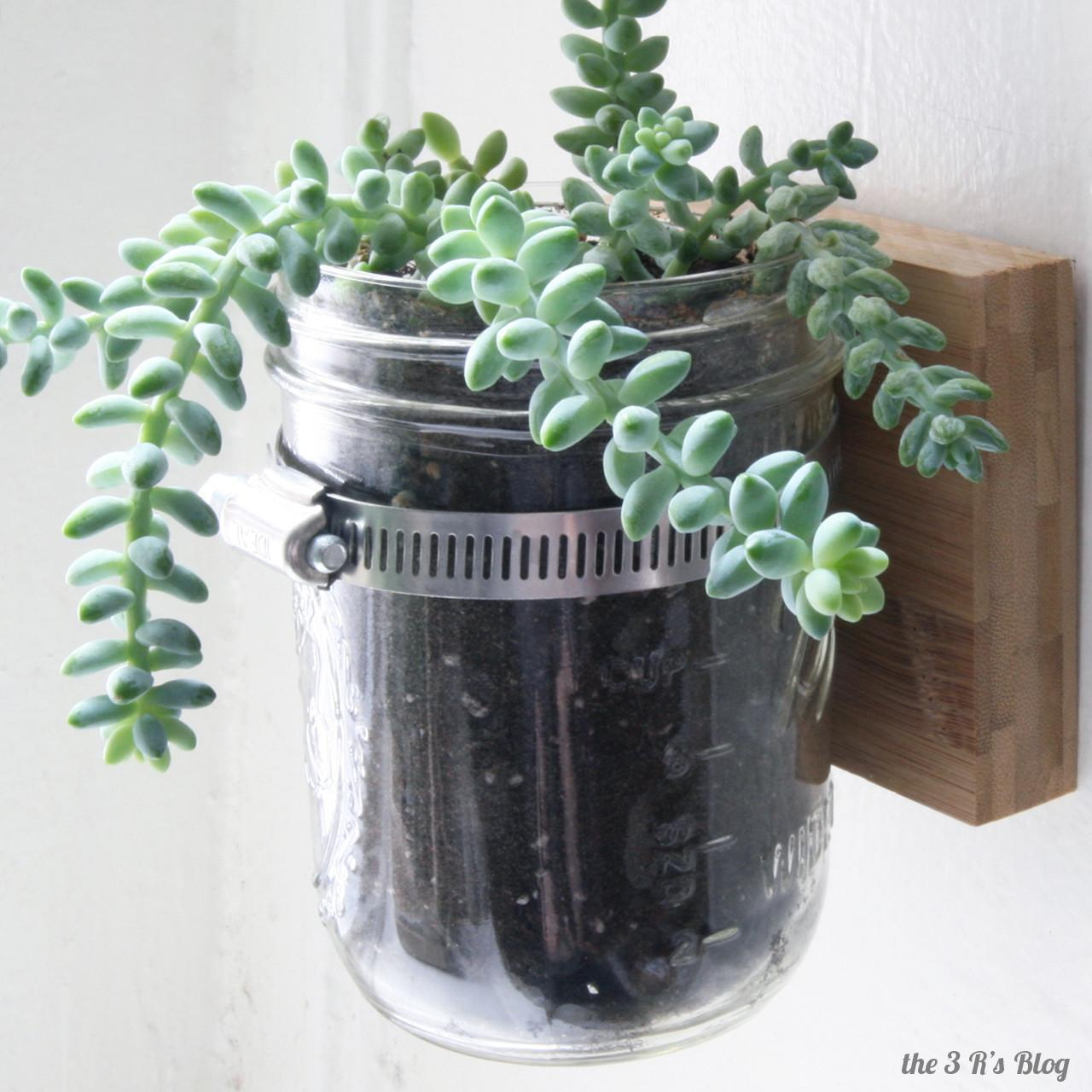 Hanging Mason Jar Planter Blog