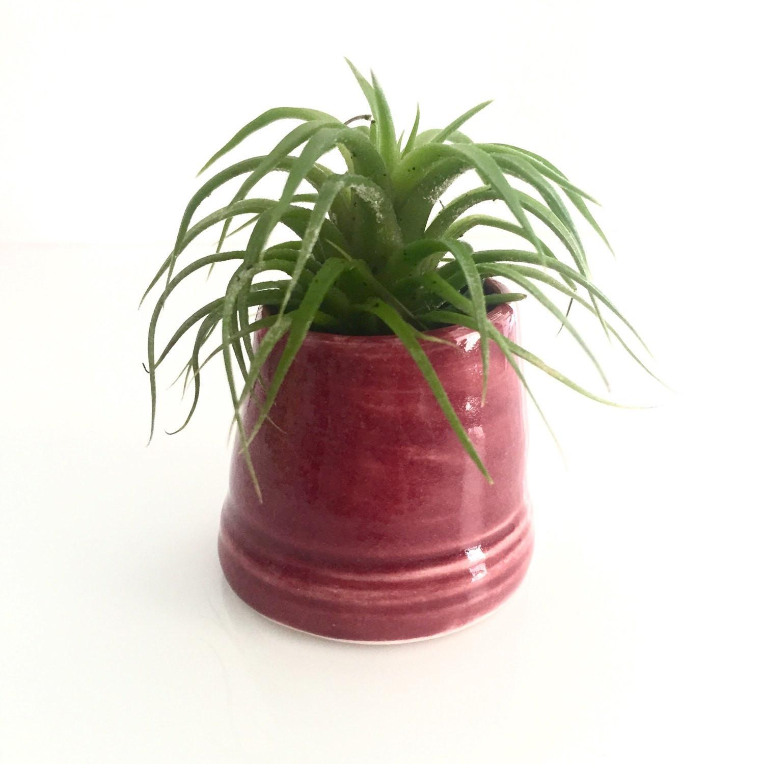 Hdc26 Air Plant Holder Vase Firelight Pottery Home Decor