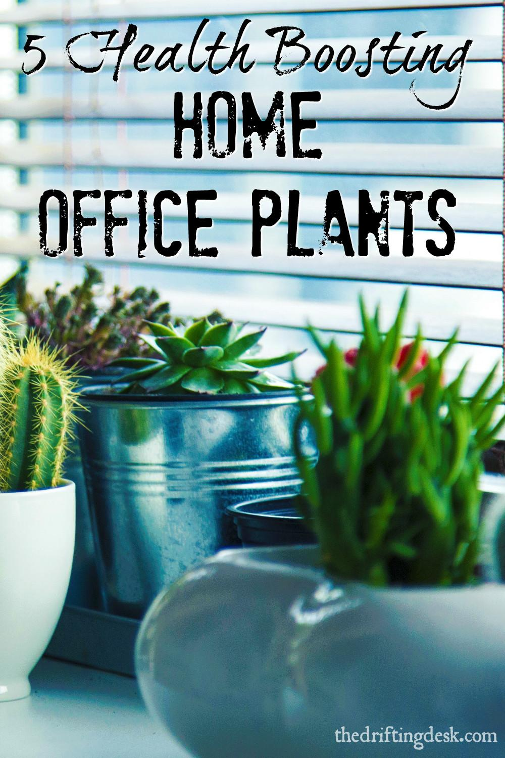 Health Boosting Home Office Plants Drifting Desk