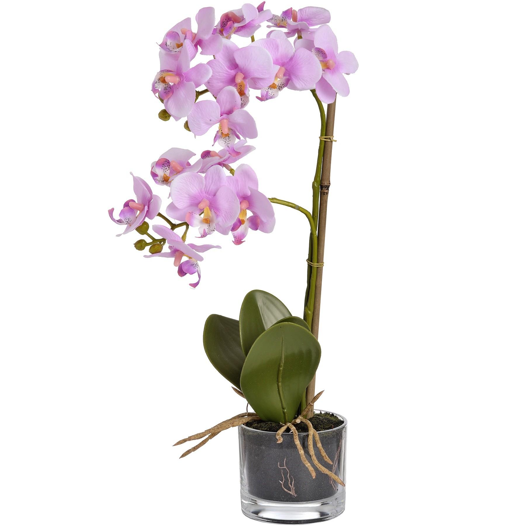 Hill Interiors Harmony Potted Artificial Orchid Plant