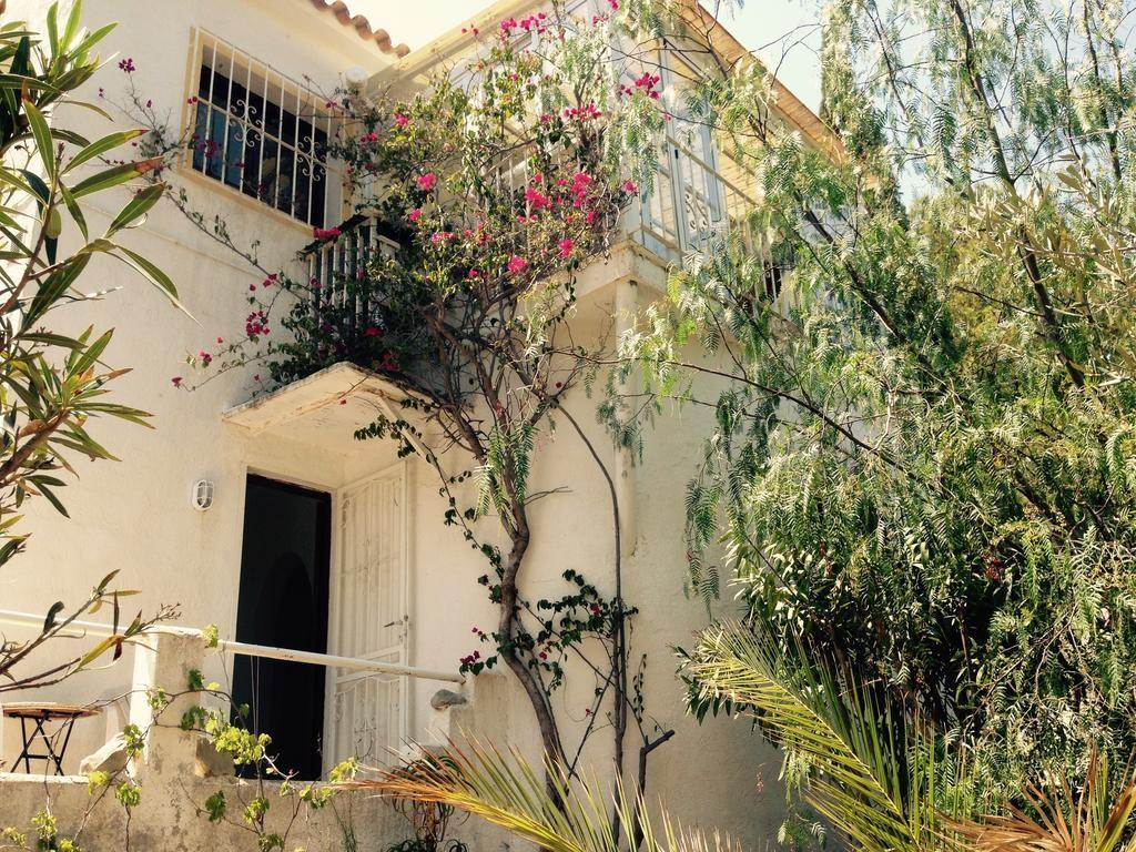 Holiday Home Pine Forest House Altea Spain Booking