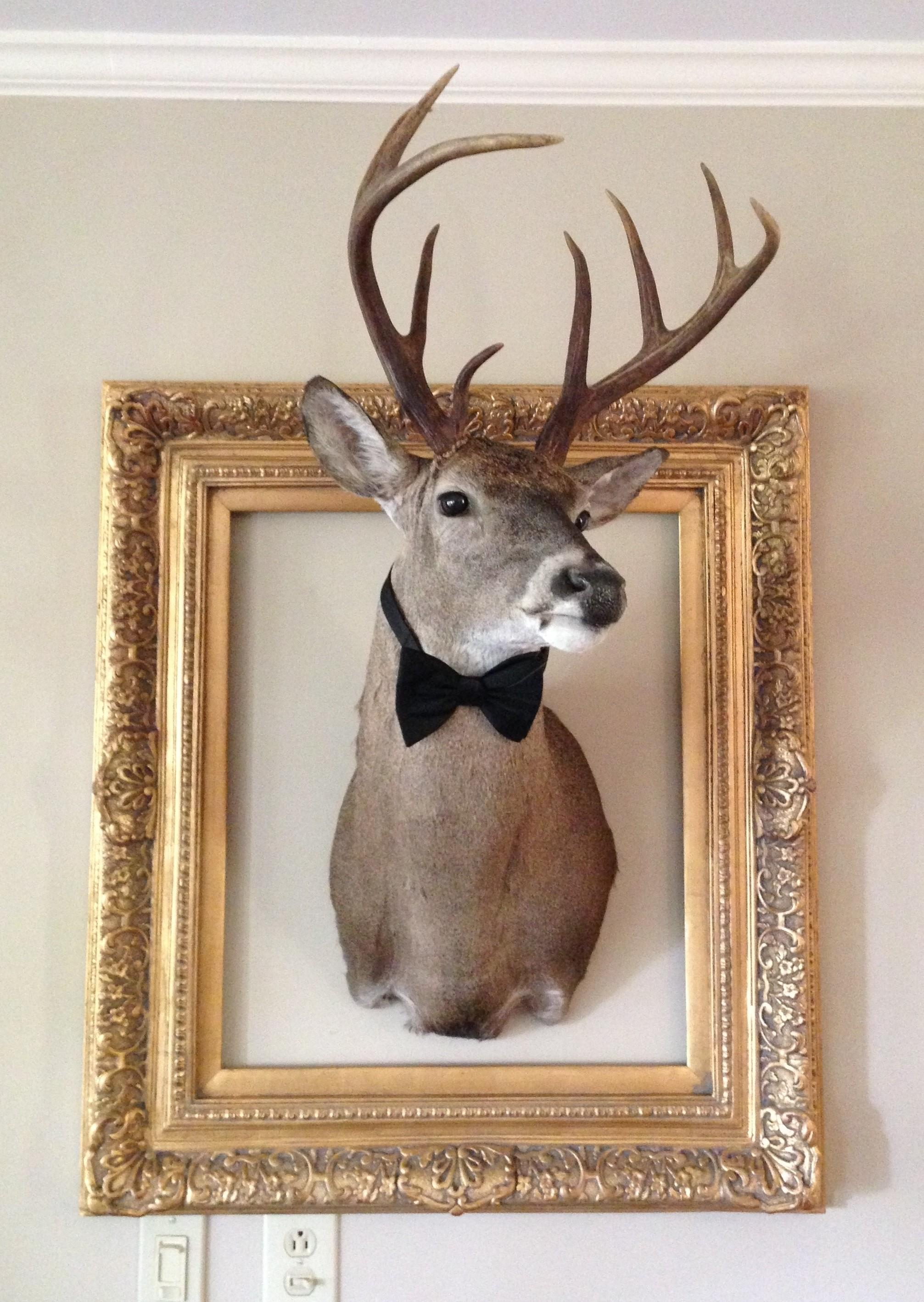 Home Design 1000 Deer Mounts