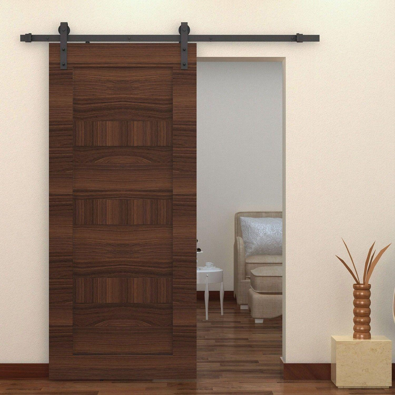 Home Design Interior Barn Doors Closets