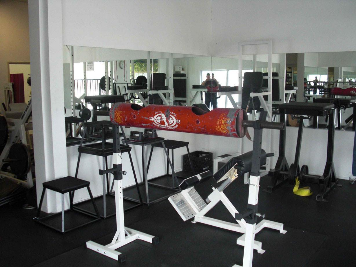 Home Gym Layout Decoration Decosee